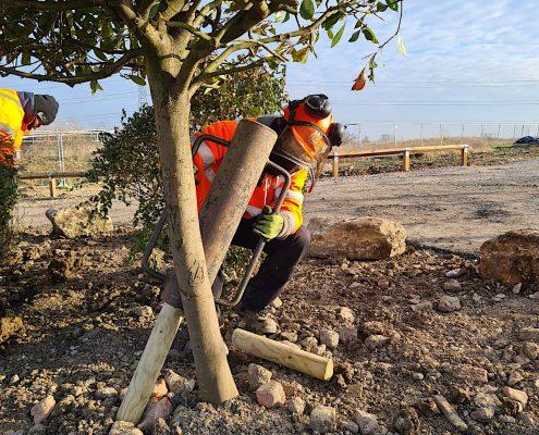Broughton and Middleton Tree Planting 1