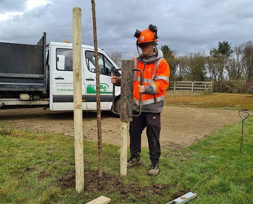 Broughton and Middleton Tree Planting 3