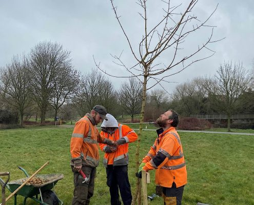 Broughton and Middleton Tree Planting 5