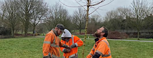 Broughton and Middleton Tree Planting 530 X 200